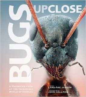 BugsUpClose