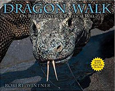 DragonWalk