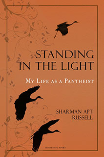 StandingInTheLight-Kindle-KDP-sm